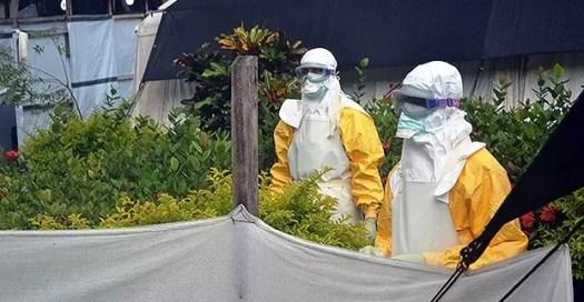 ebola epidemia virus