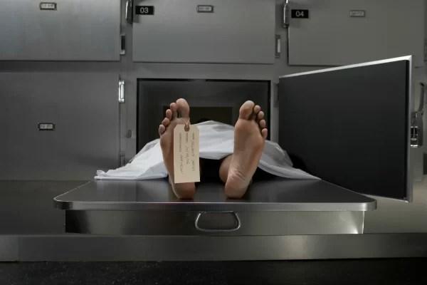 morgue615