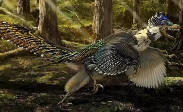 dinosaurio_plumas_np