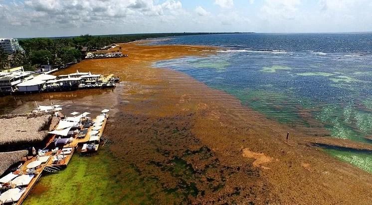 Así está la playa de Boca Chica en este momento