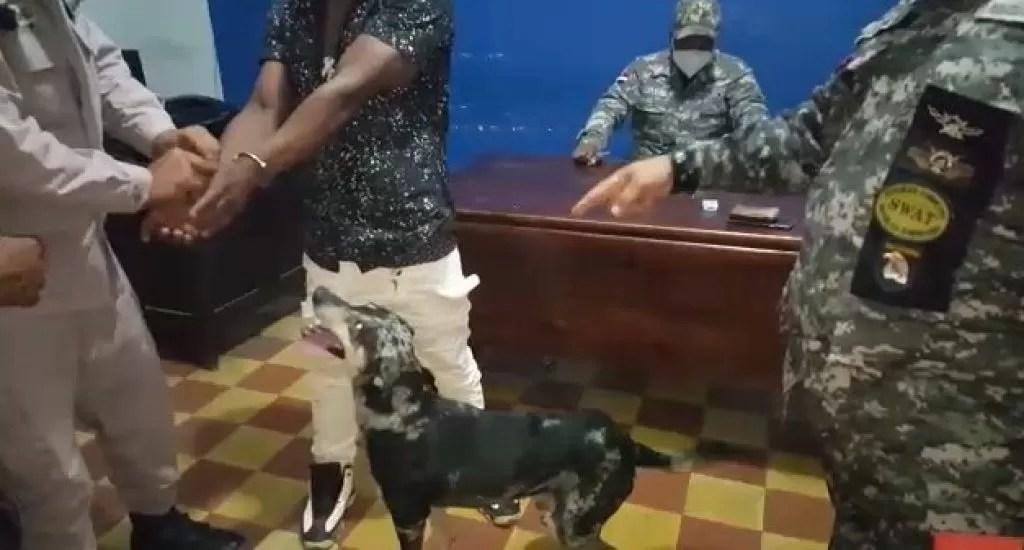 Cotuí: Perro llega a destacamento buscando a su amo detenido por violar el toque de queda