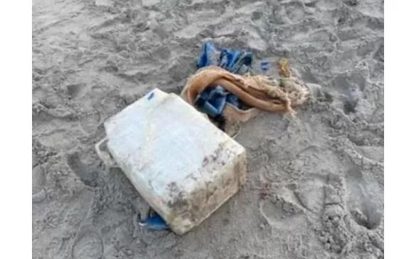 Se encontró un paquete de 30 kilos de cocaína en una playa de Florida