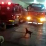 Video- Lo nunca visto en RD, huelga de bomberos