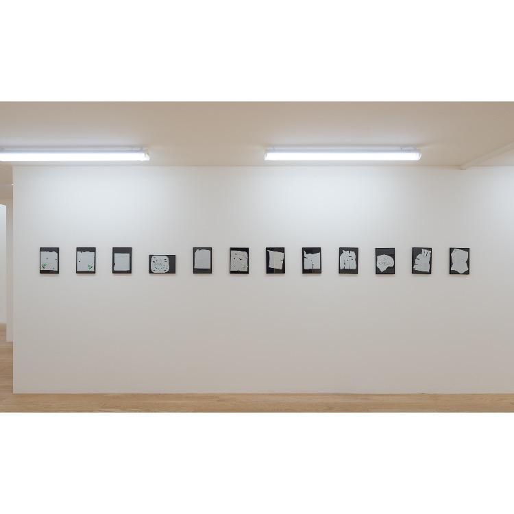 Vue de l'exposition de Marie Chamant «Javelles – Jachères – Polygraphie», avec : «Pieds Chrétiens», 2009. Photographie: © Grégory Copitet – Enseigne des Oudin