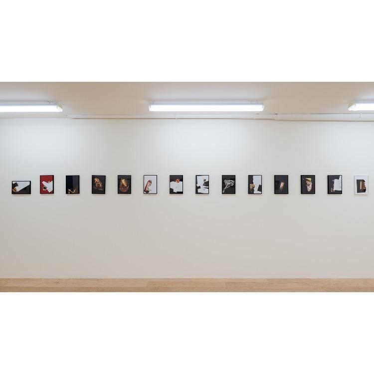 Vue de l'exposition de Marie Chamant «Javelles – Jachères – Polygraphie», avec : «Pieds Juifs», 2009. Photographie: © Grégory Copitet – Enseigne des Oudin