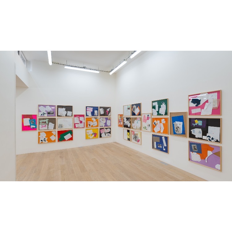 Vue de l'exposition de Marie Chamant «Javelles – Jachères – Polygraphie», avec 29 «Javelles», 2017-2019. Photographie: © Grégory Copitet – Enseigne des Oudin