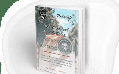 CARNAVAL D'ARTICLES : RESTER FOCUS SUR SES OBJECTIFS