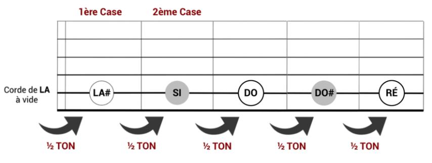 """Evolution des demi-tons sur une guitare pour l'article """"Le Demi-Ton En Musique"""""""