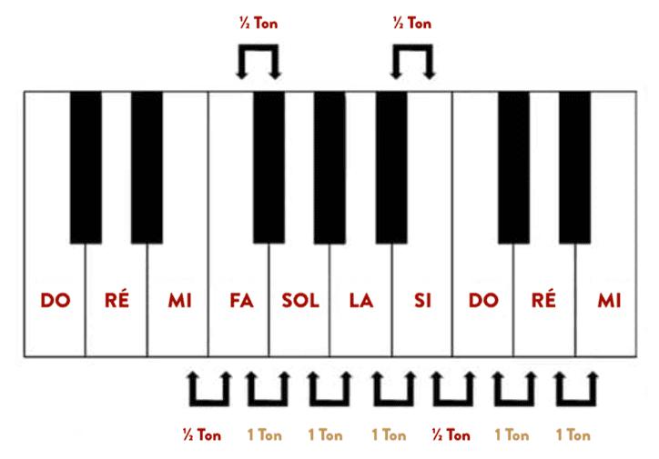 """Différences entre tons et demi-tons sur un clavier pour l'article """"Les Intervalles En Musique"""""""
