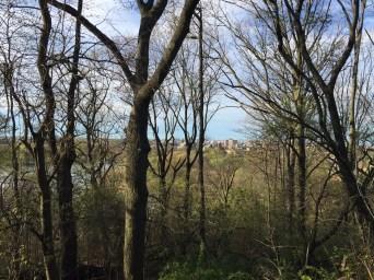 NY Prospect Park hill
