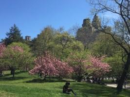 NY Prospect Park