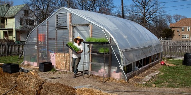 Carolyn Leadly outside greenhouse at Rising Pheasant Farms - urban farming