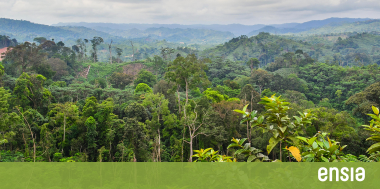 Assistance to the democratic republic of the congo the drc's development and humanitarian needs are vast. What S Climate Change Going To Do To The Congo Rainforest Ensia