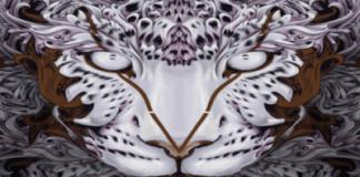 Desain Macan karya Bayo Gale ISI Yogyakarta Untuk Sampul Album Maroon 5