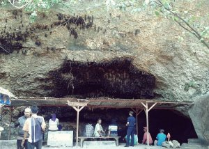 Gua Ngerong Tuban Jawa Timur