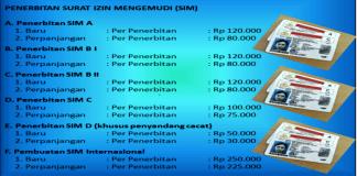 Biaya Pembuatan SIM