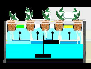 Jenis Hidroponik