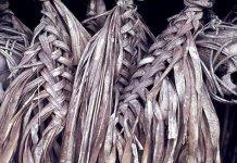 Inilah Kisah Alfred Bock Ketemu Manusia Suku Kanibal Borneo