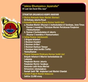 Struktur Organisasi Korps Marinir TNI AL