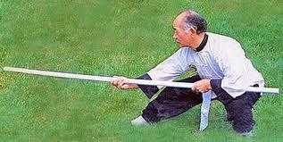 Feng shou kung fu