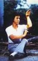 Snake Kung Fu