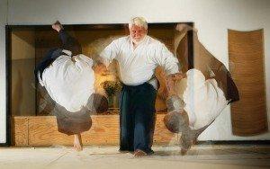 Templegate Aikido