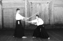 yoshin ryu ju jitsu