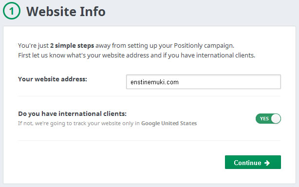 positionly add website