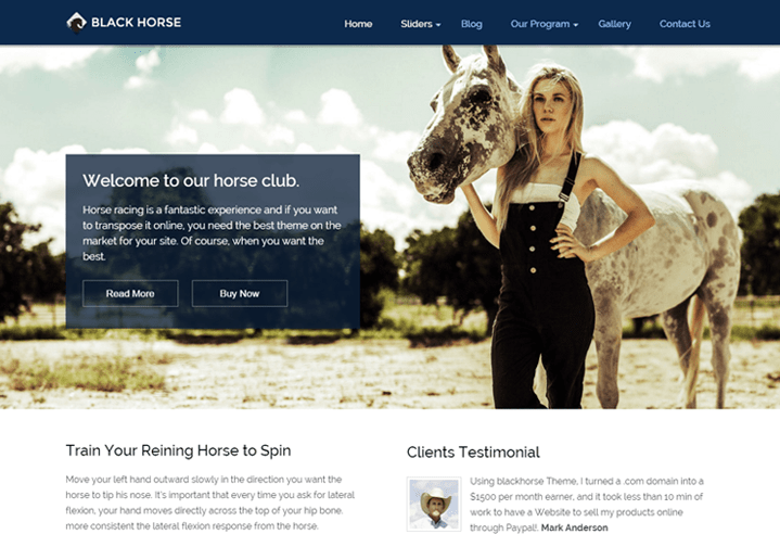 WordPress Theme For Equestrians