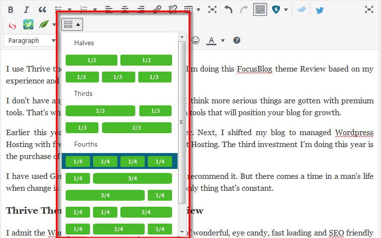 focusblog theme review