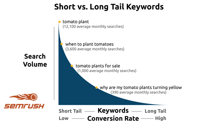long tail importance
