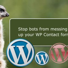 stop bots from wp contact form