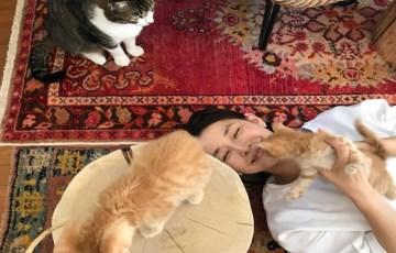 石田ゆり子-インスタ-猫-しゃべる