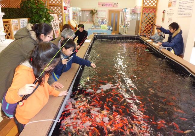 茨城県の釣り堀のおすすめ!子供向け、ニジマスがいる、その場で食べる等も