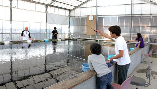 埼玉県の釣り堀11選!その場で食べれるか、子供向けやニジマスがいる場所