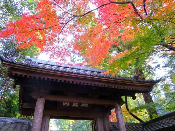 円覚寺の紅葉の2017年の見頃の時期は?アクセス・混雑や見どころも