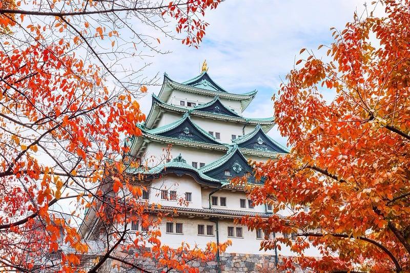 名古屋城の紅葉の2017年の見頃の時期は?アクセス・混雑、見所も