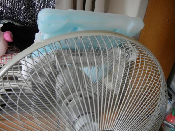 扇風機で冷風を出す方法8選!保冷剤や氷で冷たい・涼しい風を出せる
