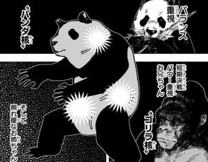 パンダの3つの核