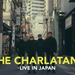 『ザ・シャーラタンズ』2016年3月来日公演開催!!!!