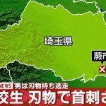 埼玉県蕨市の自宅で男子高校生が首を刺され重傷を負った殺人未遂事件を考察!