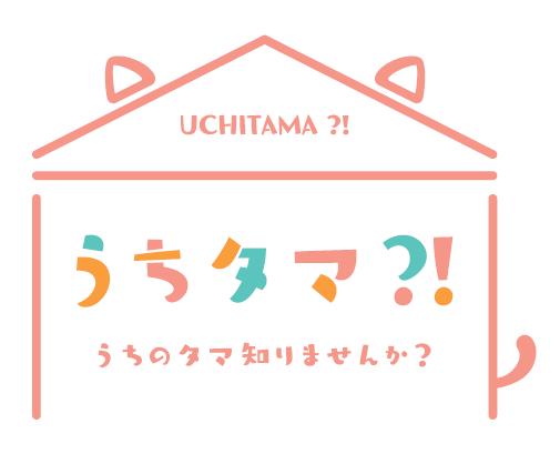 TVアニメ「うちタマ?! ~うちのタマ知りませんか?~」最新PV&CM公開!放送局・放送時間決定!