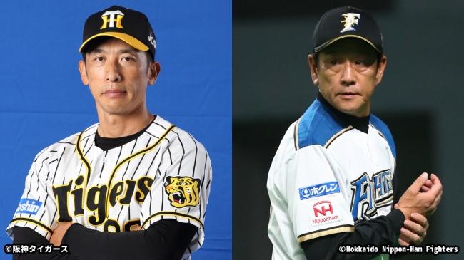 2020シーズンのプロ野球放送スケジュール決定!阪神タイガース、北海道日本ハムファイターズの公式戦を生中継79試合を含む計110試合お届け!!