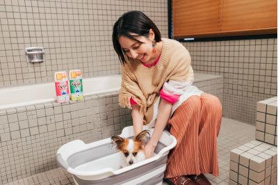 ベッキーが『愛犬用炭酸入浴剤ぬくりん』アンバサダーに就任!気持ちよさそうな犬たちにほっこり。普段の愛犬ボディケアのコツも披露