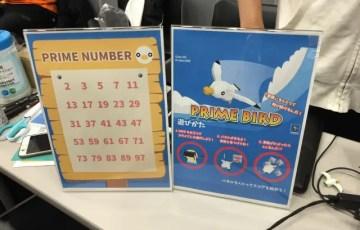 prime bird 素数