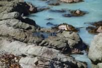 Kaikoura Ohai Bay