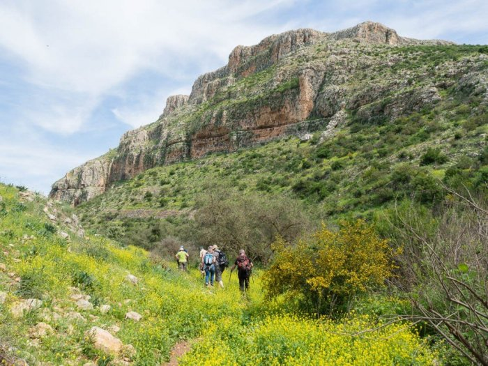 Hiking tour through the Hamam valley and Mt. Arbel