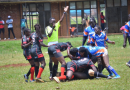 Rugby: Blue Whales dominate age grade category as neighbors Swans finish third