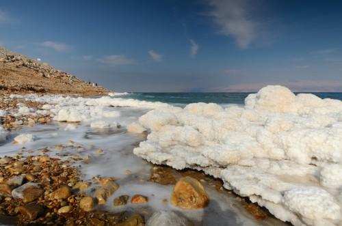 mar muerto en peligro de extinción