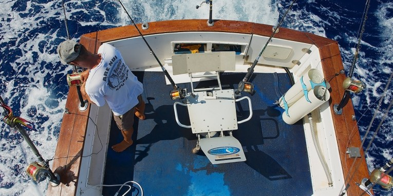 torneo de pesca bisbee 2015 en cabo san lucas